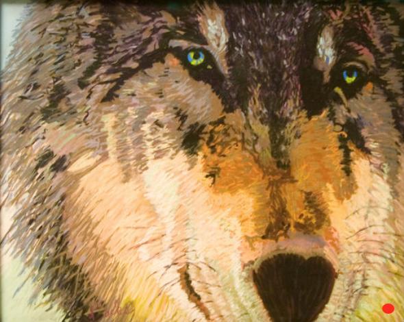 Yellowstone Wolf, Pastel, 15Hx15W, SOLD