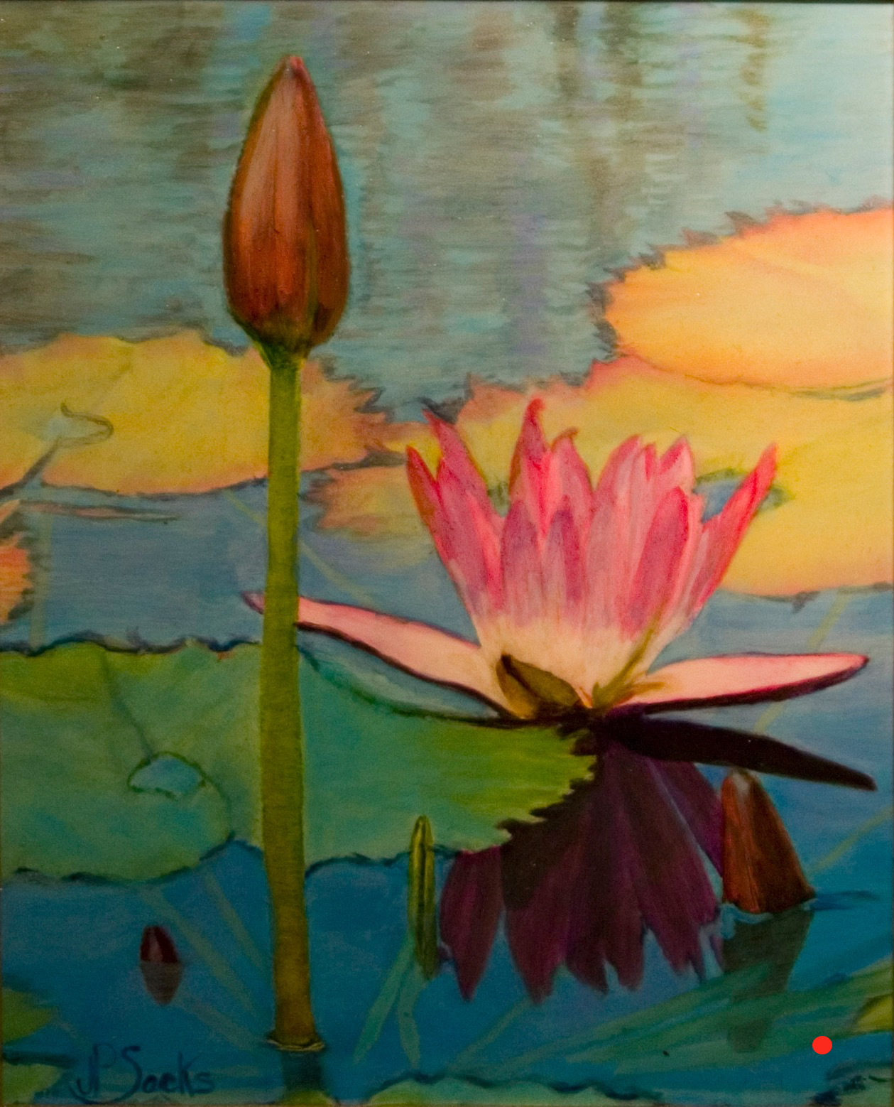 Water Lily of Botswana, Watercolor, 10Hx8W, SOLD
