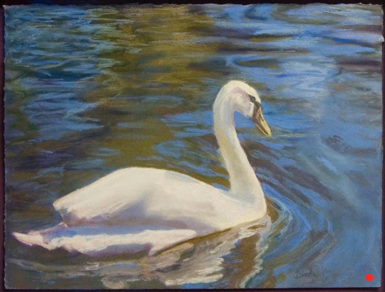 Keukenhof Gardens' Swan, Pastel, 15Hx18W, SOLD