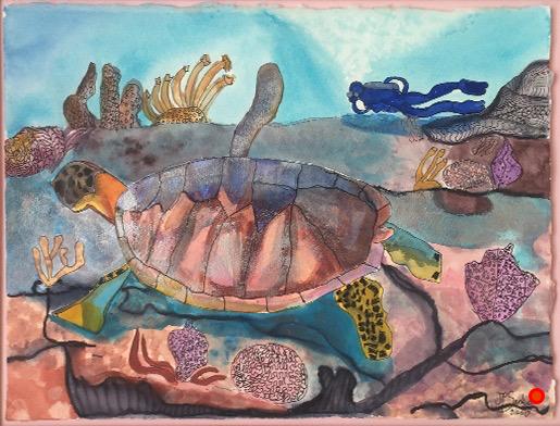 Little Dix Bay Turtle, Watercolor, 18Hx24W, SOLD