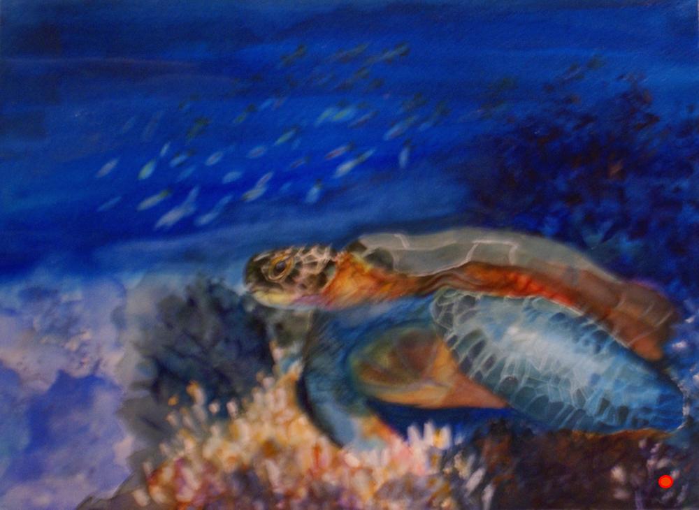 Undersea, Watercolor, 12Hx18W, SOLD