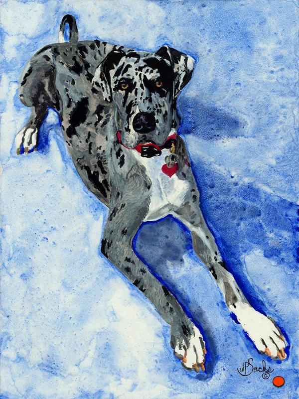 Heidi the Harlequin Great Dane, Watercolor, 10Hx8W, SOLD