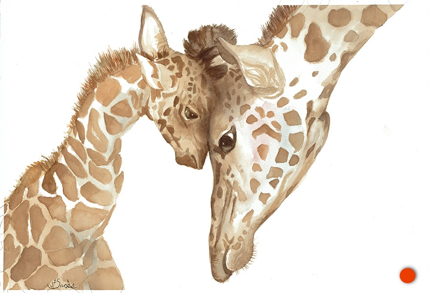 Pure Love, Watercolor, 11Hx16W, Original SOLD  Giclees available as follows:  Giclee print on high quality watercolor paper - 12Hx18W, plus border white, $78 Giclee on stretched canvas ready to hang - 16.25Hx24W, $276