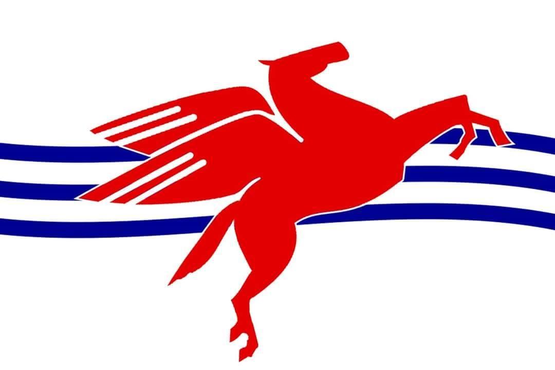 Dallas May's Flag