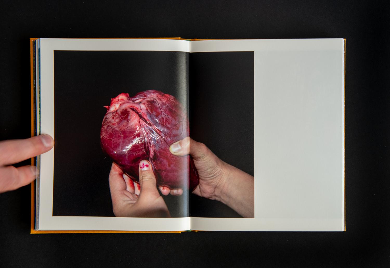 TE_AHI_KĀ_book-15.jpg