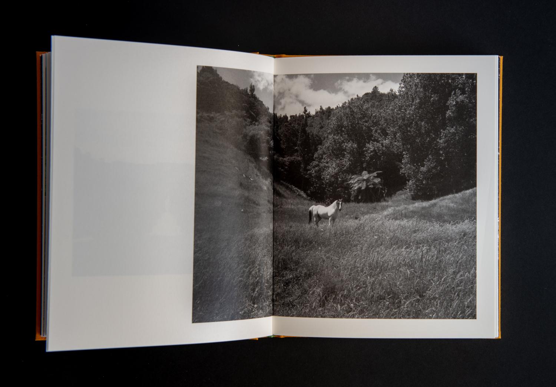 TE_AHI_KĀ_book-18.jpg
