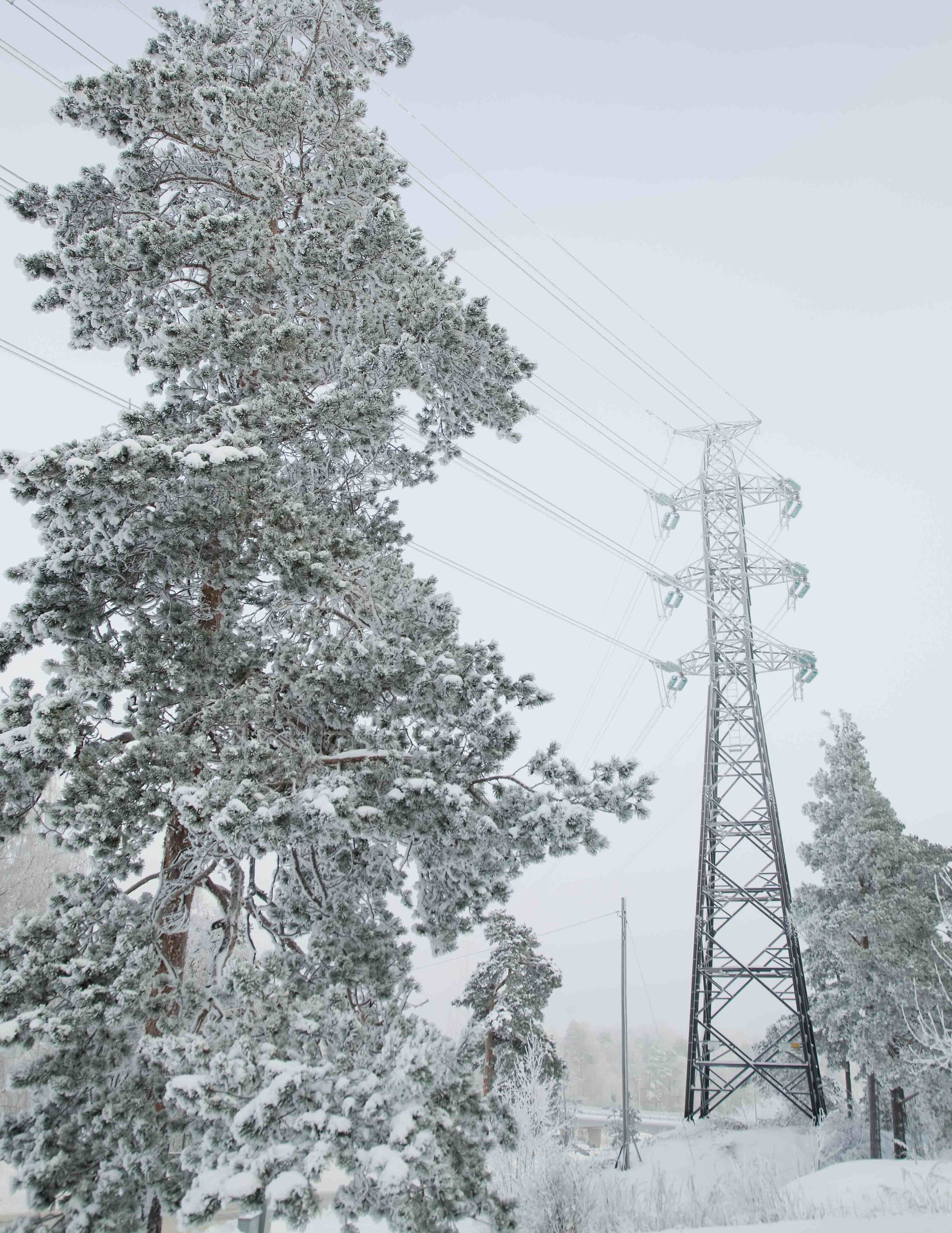 Finnish electricity network & distribution company