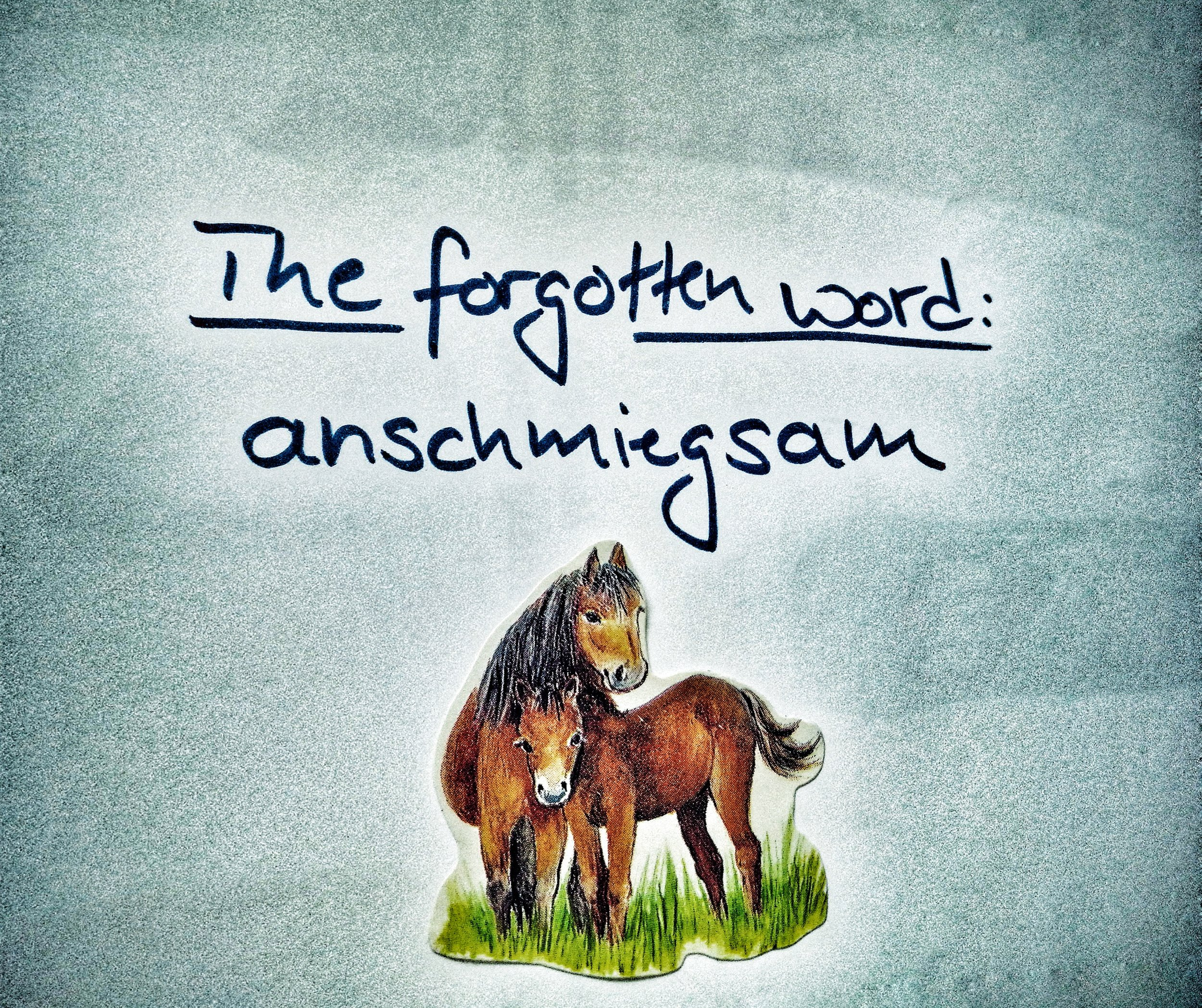 anschmiegsam-Pferde-horses-word-meaning-forgotten-Sprache-cuddly-conformal-soft-to-the-touch-language-Wort