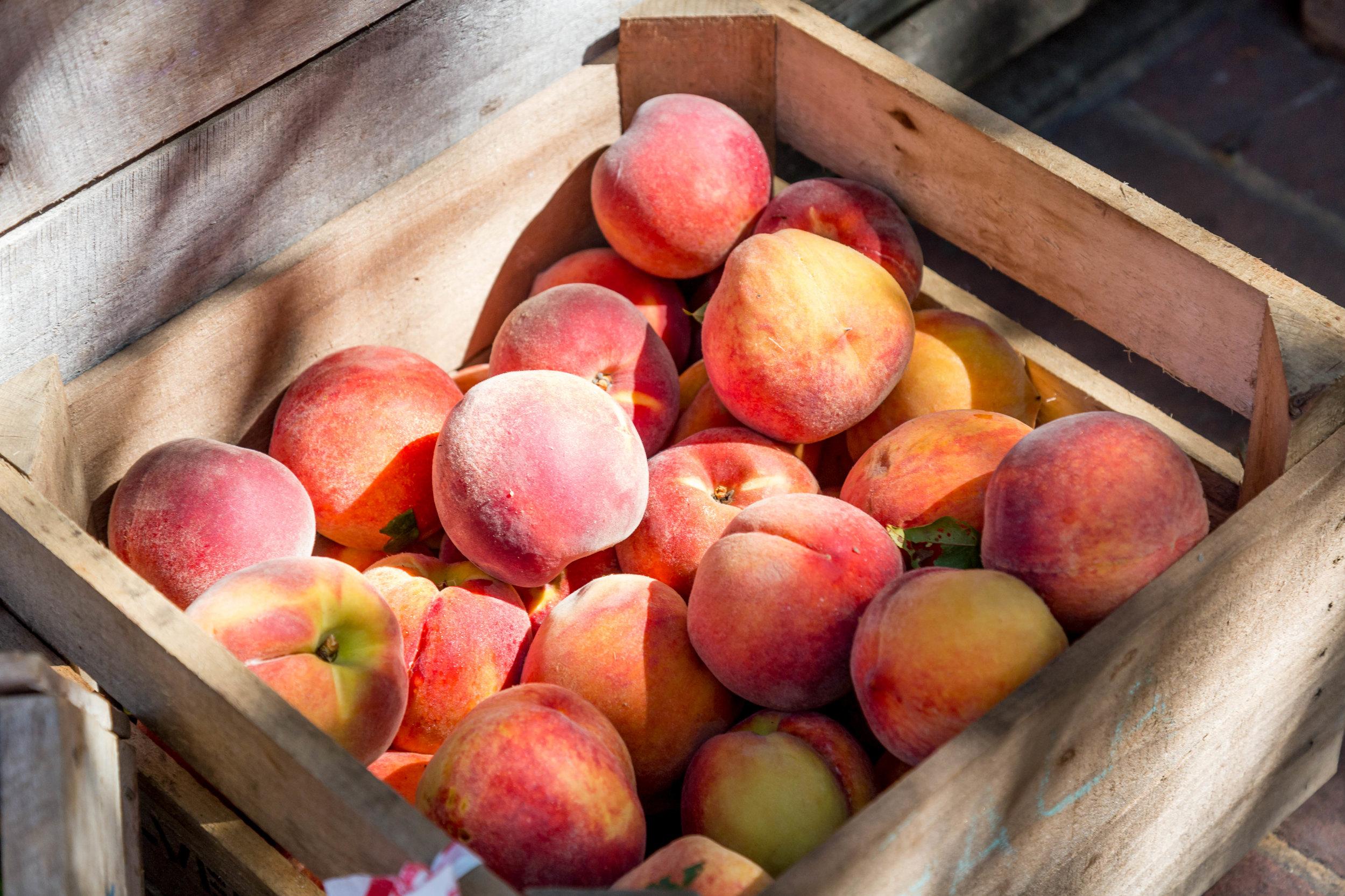 peach-Pfirsich-sommer-obst-früchte-fruit
