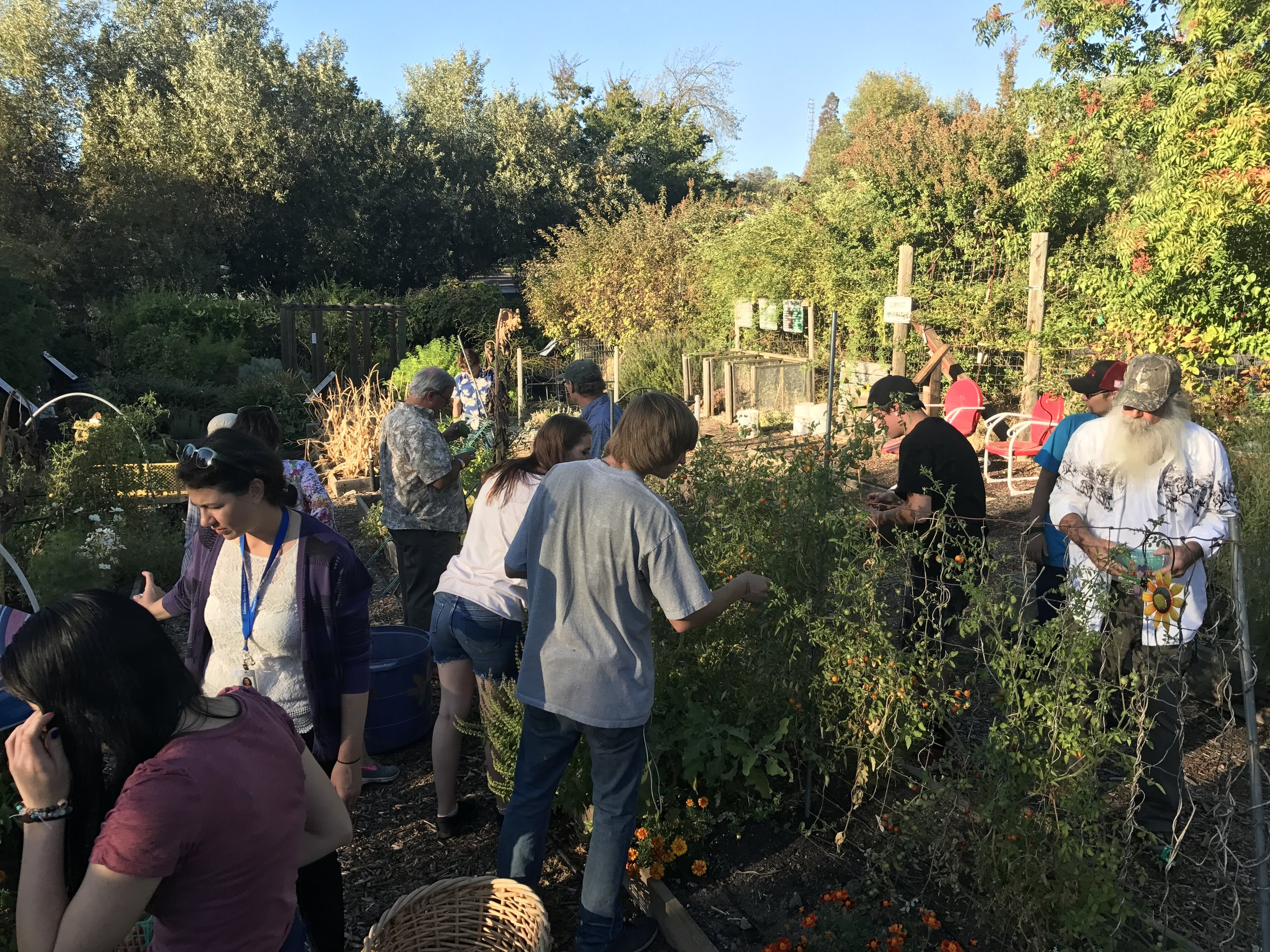"Monthly ""Group Gathering"" September's Gathering took place at the Master Gardener Demo Garden in San Andreas"