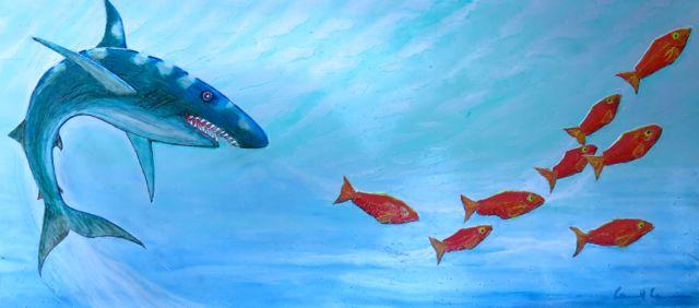 Shark bait.jpg