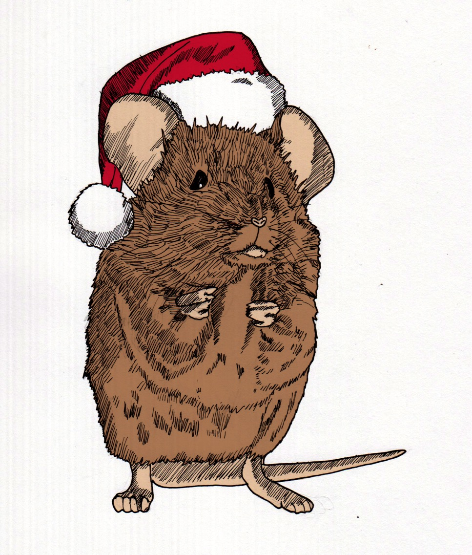 Christmas Mouse by Rory Kennedy @ Multimedia Art Show.JPG