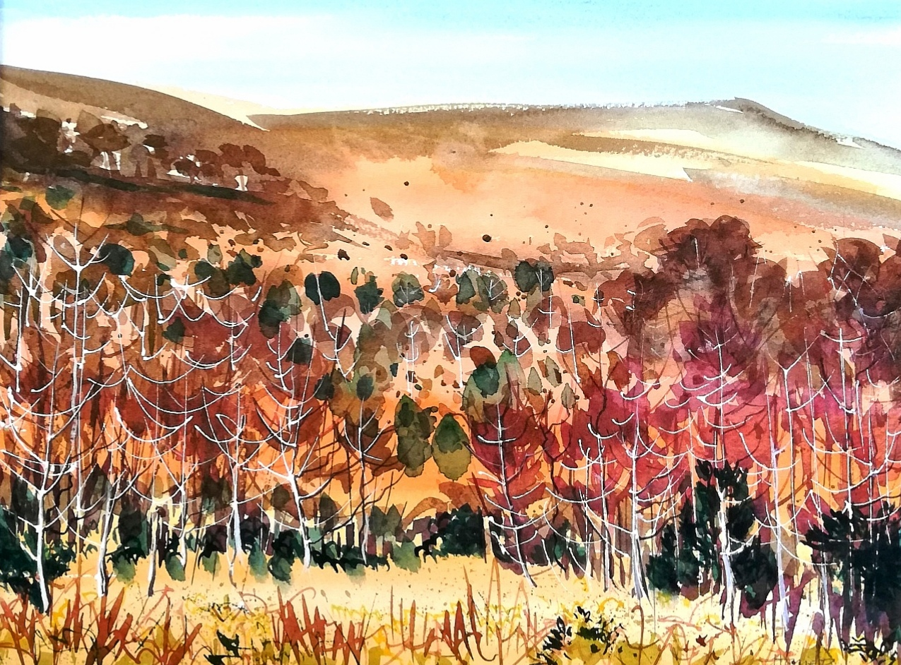 Black Hill, Dartmoor. watercolour