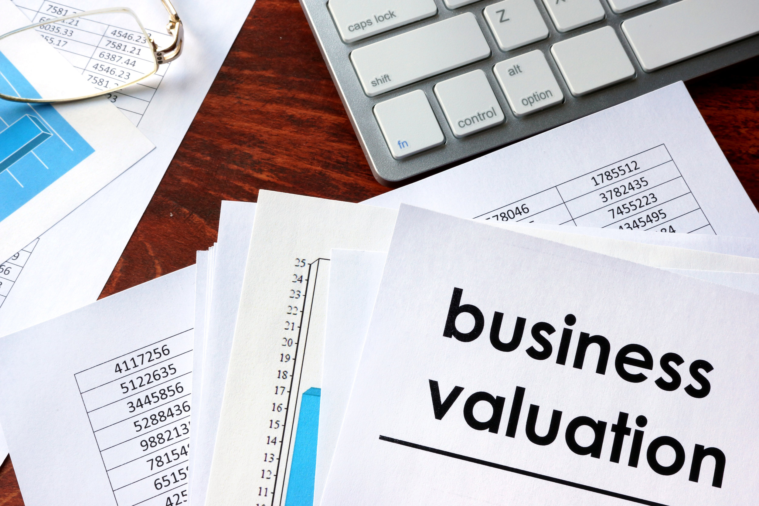 Valuation Services - Tax Reporting/ Gift and Estate Tax Planning Purposes;Financial Reporting/ Intangible Assets Valuations;Transaction Support/ Selling a Business;409A Valuations and ESOPs;Litigation Consulting/ Expert Witness;SBA/ Bank Financing Requirements.