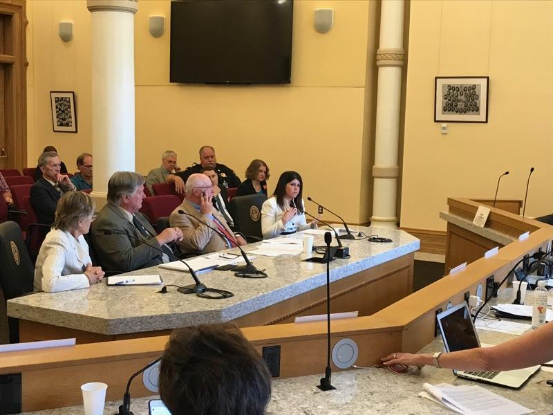 Commissioner Rose Pugliese talks to the Legislative Interim Committee about the importance of statewide collaboration to address public safety issues that stem from the growing mental health population and drug and alcohol addiction in Colorado jails.