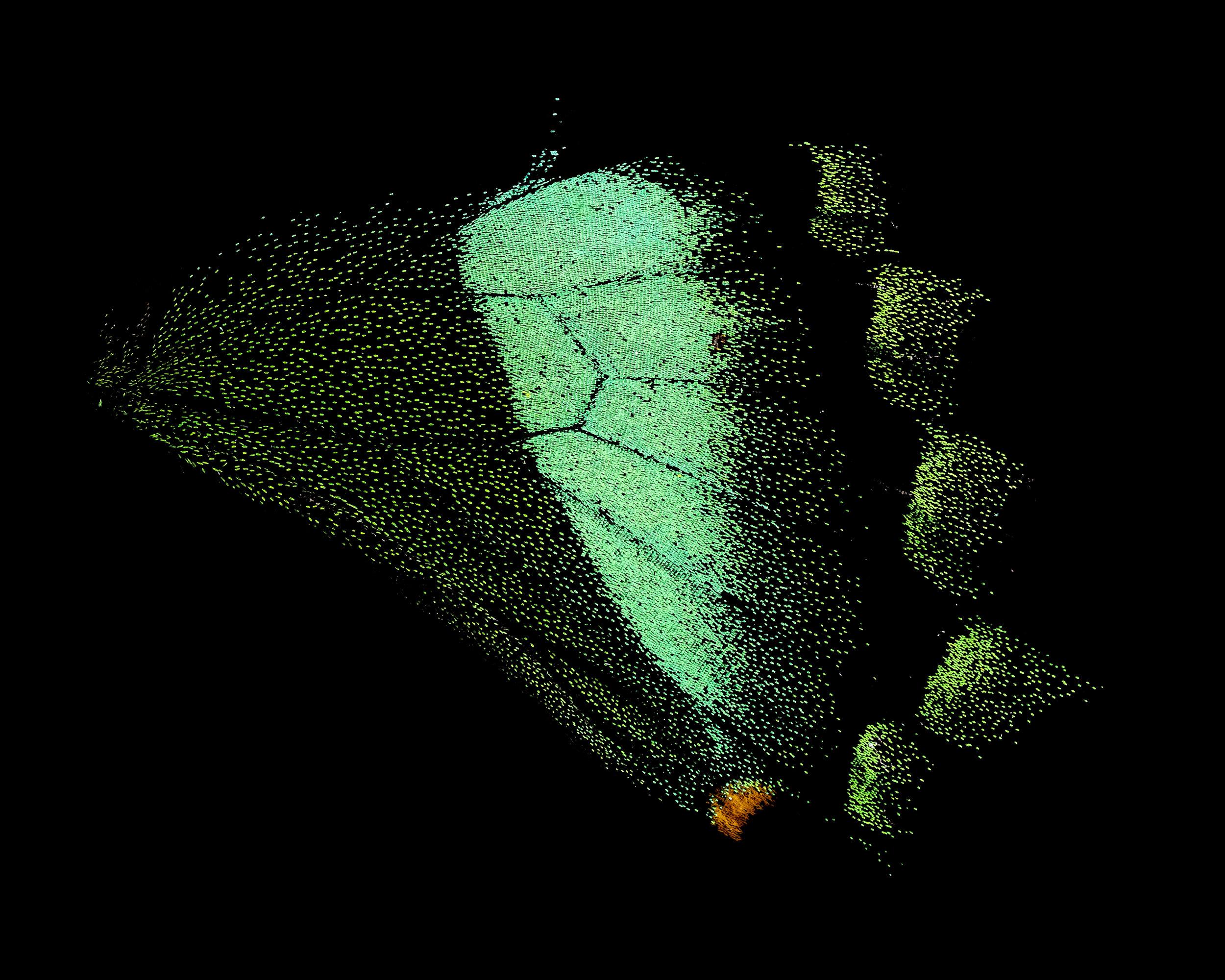 DSCF2892 1 fs.jpg