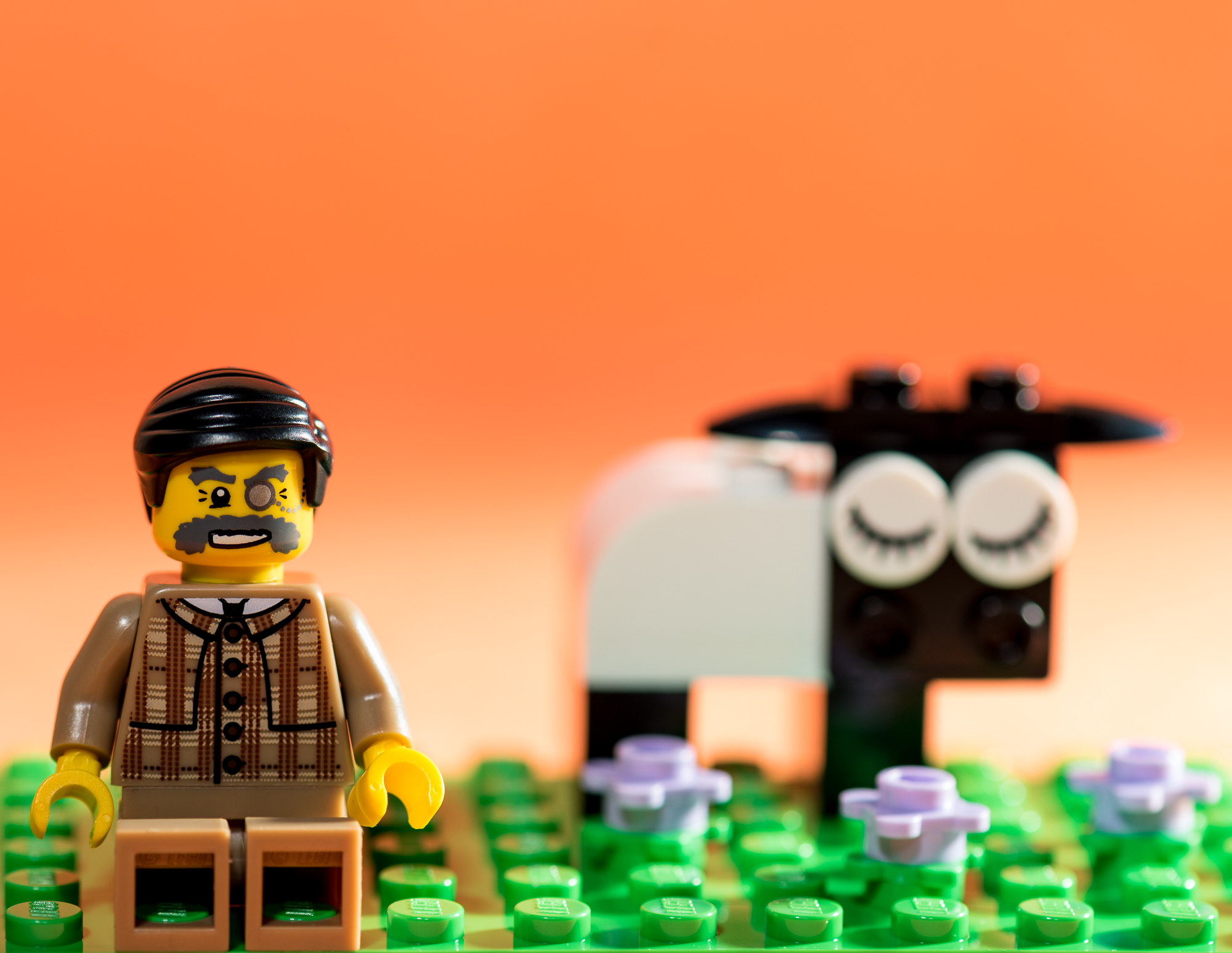 Lego Portrait Don-1.jpg