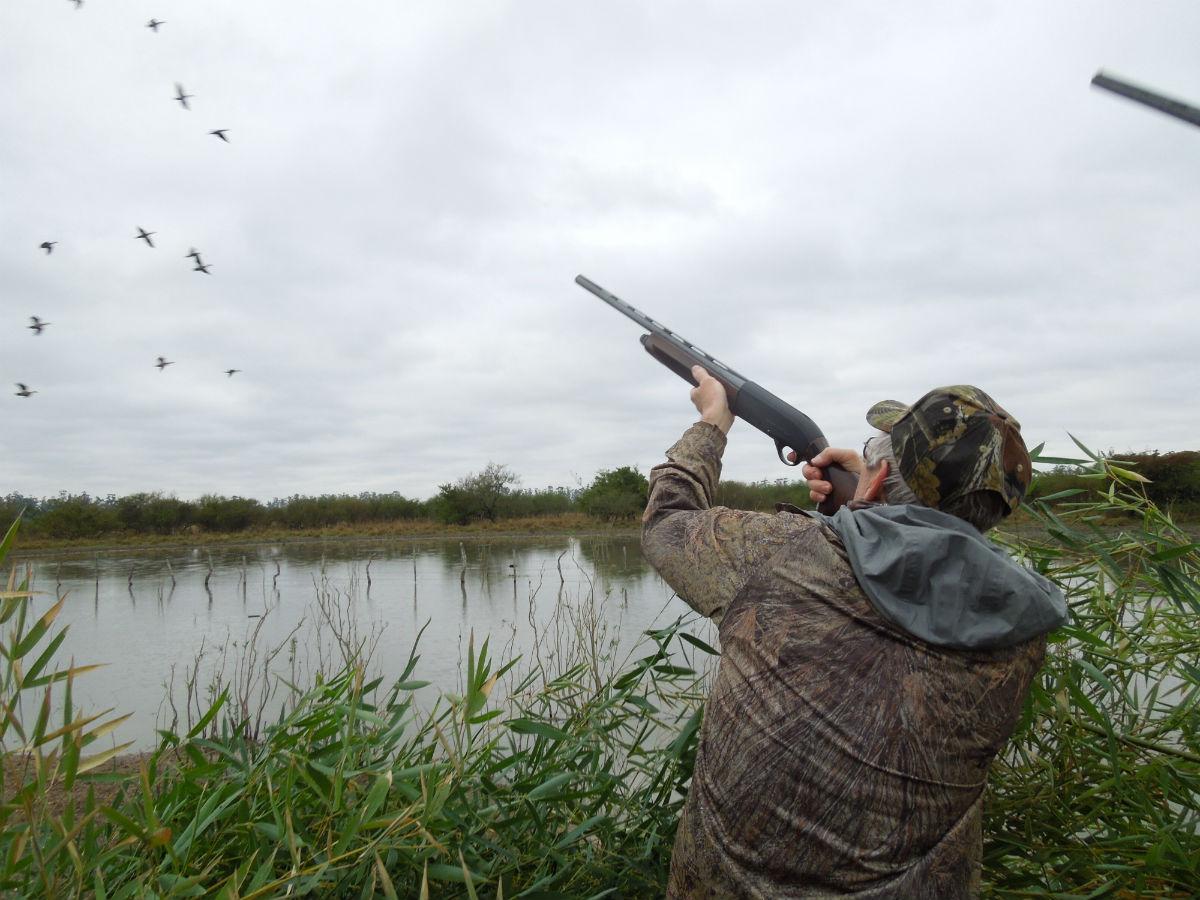 duck_hunting_argentina.jpg