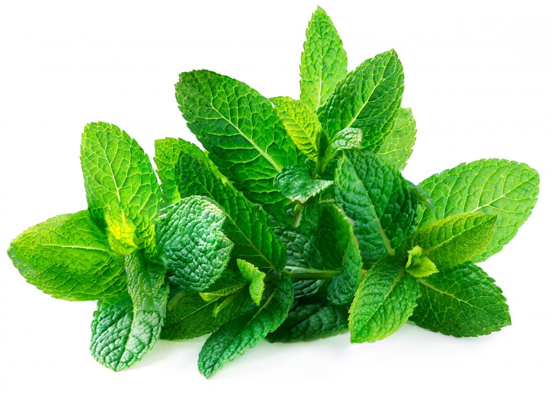 a-bunch-of-spearmint-leaves.jpg
