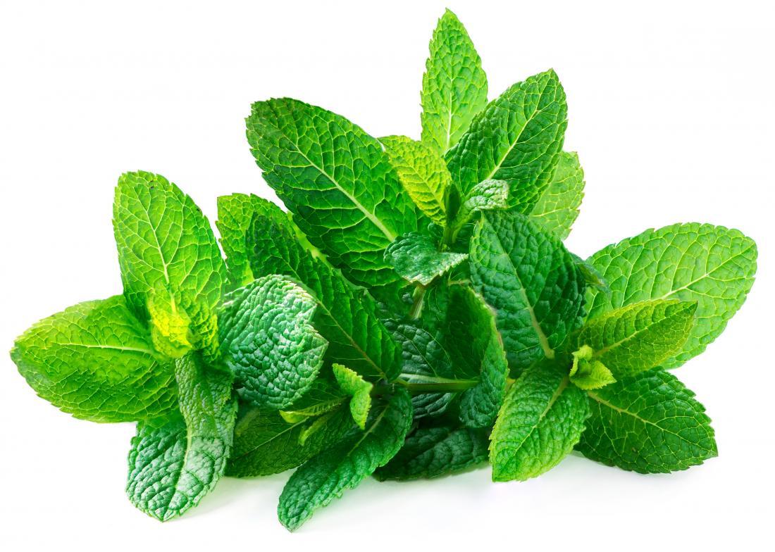 a-bunch-of-spearmint-leaves.jpg
