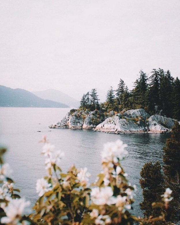 Take us to the lake 〰️ This summer is full of weekend escapes! Stay tuned to our stories capturing our weekends away across Ontario 🏕 📷 by @salvadorboissett ⠀⠀⠀⠀⠀⠀⠀⠀⠀ #wanderlustwednesday #cottagelife #lakelife #canada #travel #travelphotography #travelphoto #travelpics #travelmore #society6 #weekendescape #cottageliving #cottagelife #cottagevibes #lohncandles #journey #thejourney #thejourneyisthereward #summer #summertime #summertimeliving #madeincanada