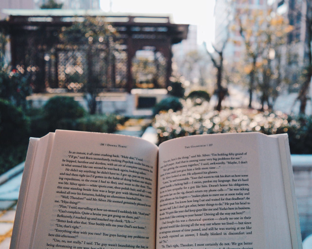 'A few quick thoughts on books' - Shannelle Chua, The Goldfinch 1.jpg