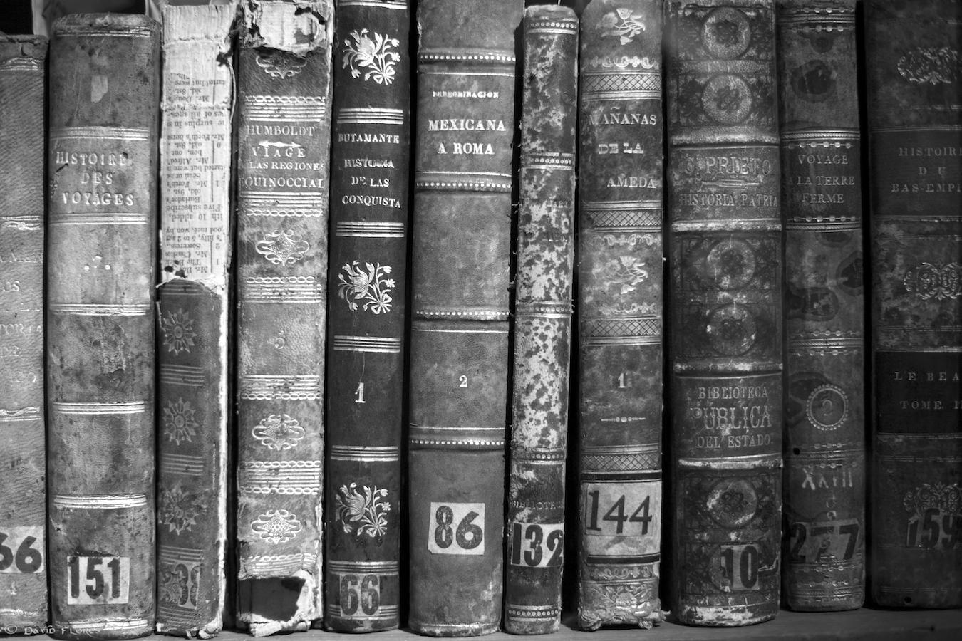 Beautiful Old Books.jpg