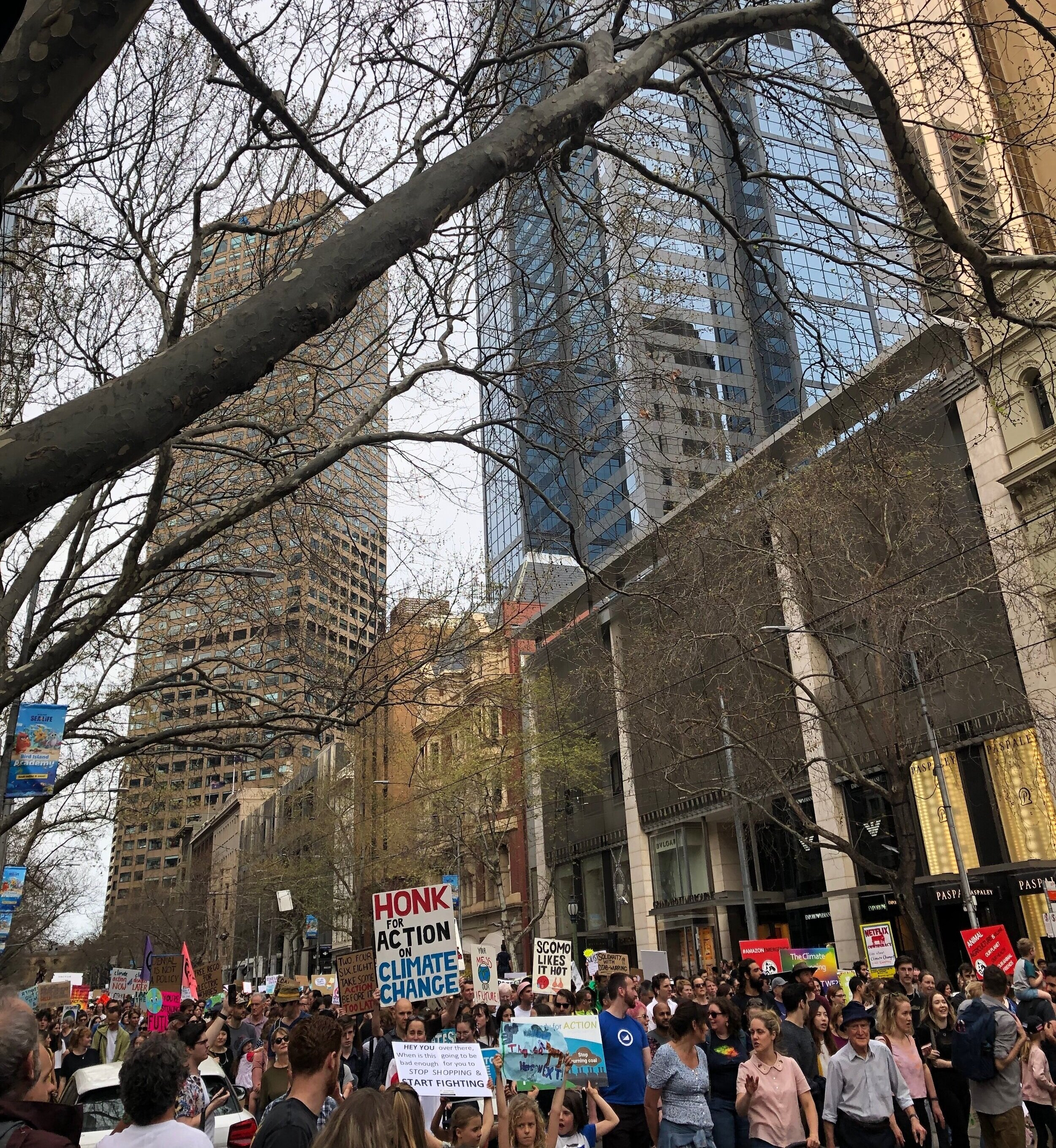 Children leading the crowd in Melbourne's CBD. Photograph by Coral Huckstep
