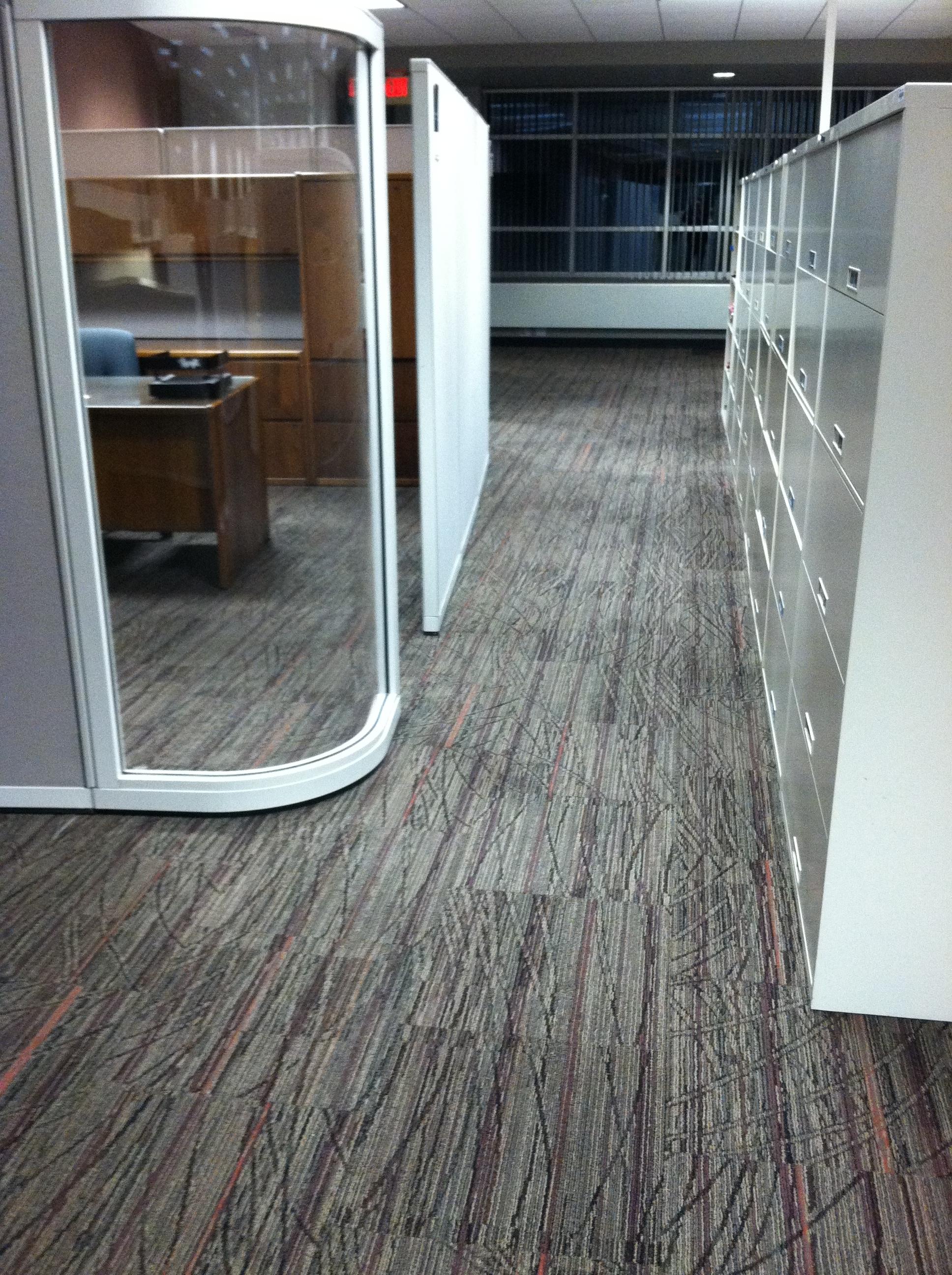 carpet 2.JPG