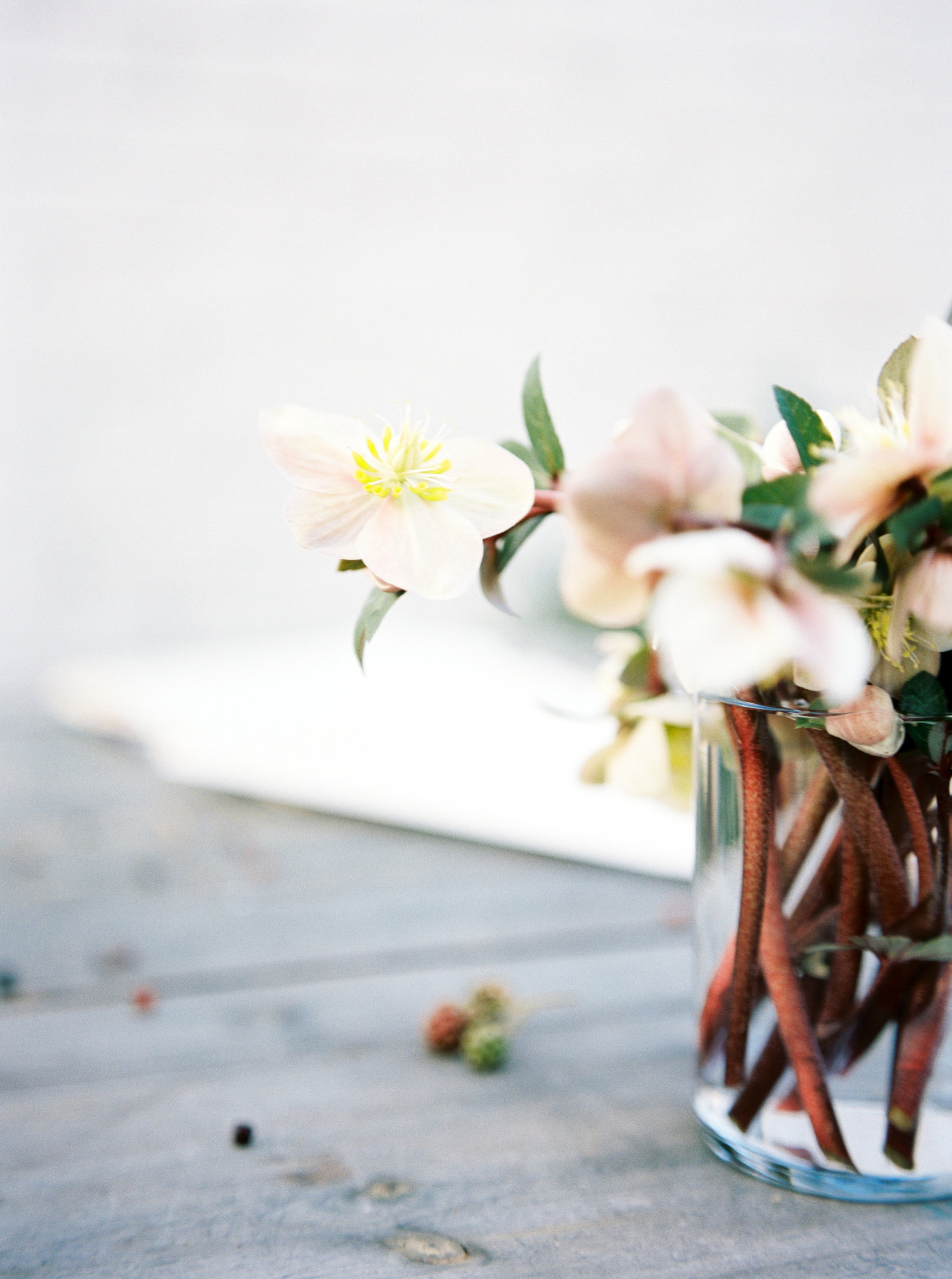 Rachel-Carter-Photography-Denver-Colorado-Film-Florist-Photographer-9.jpg