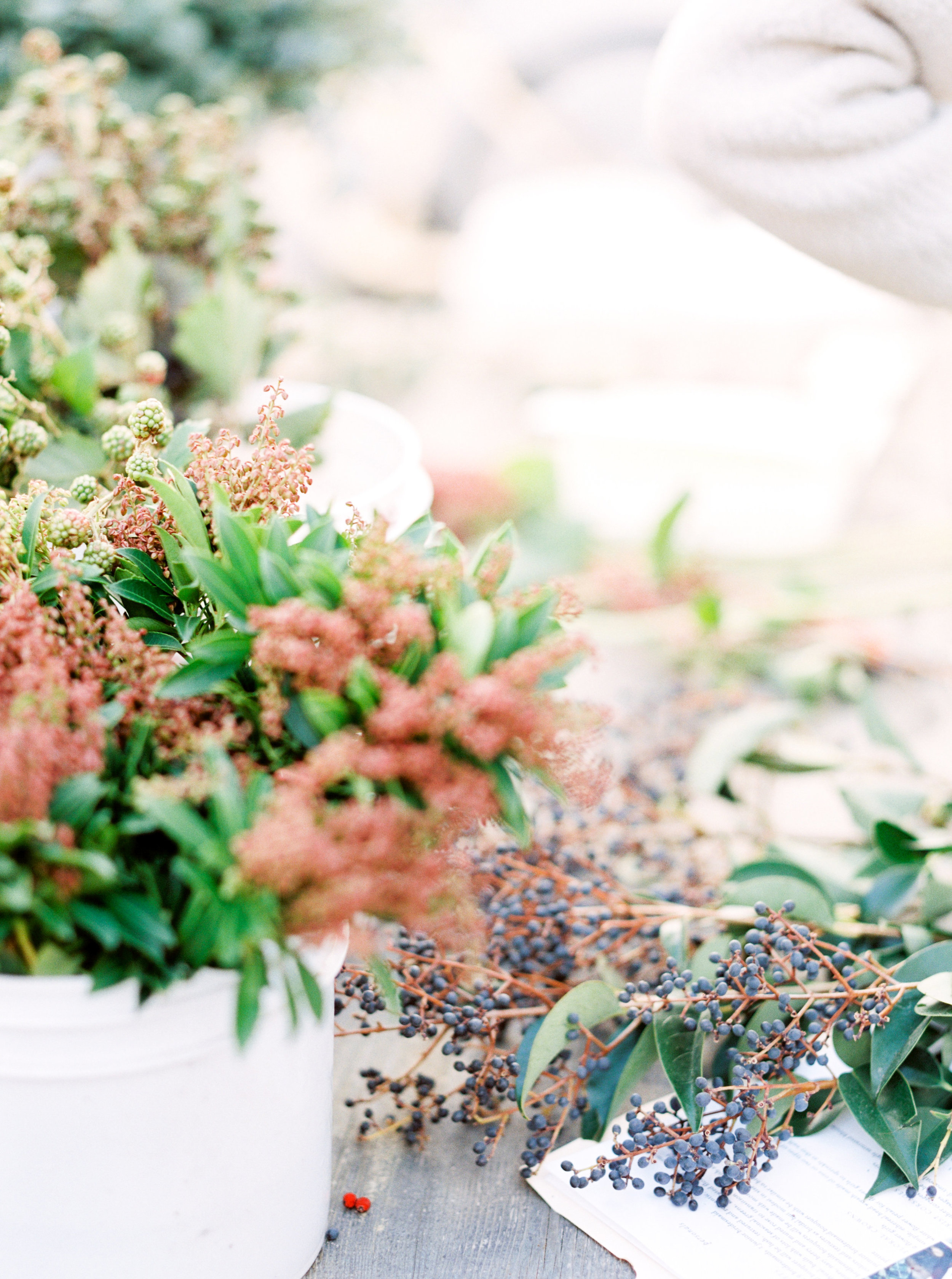 Rachel-Carter-Photography-Denver-Colorado-Film-Florist-Photographer-85.jpg