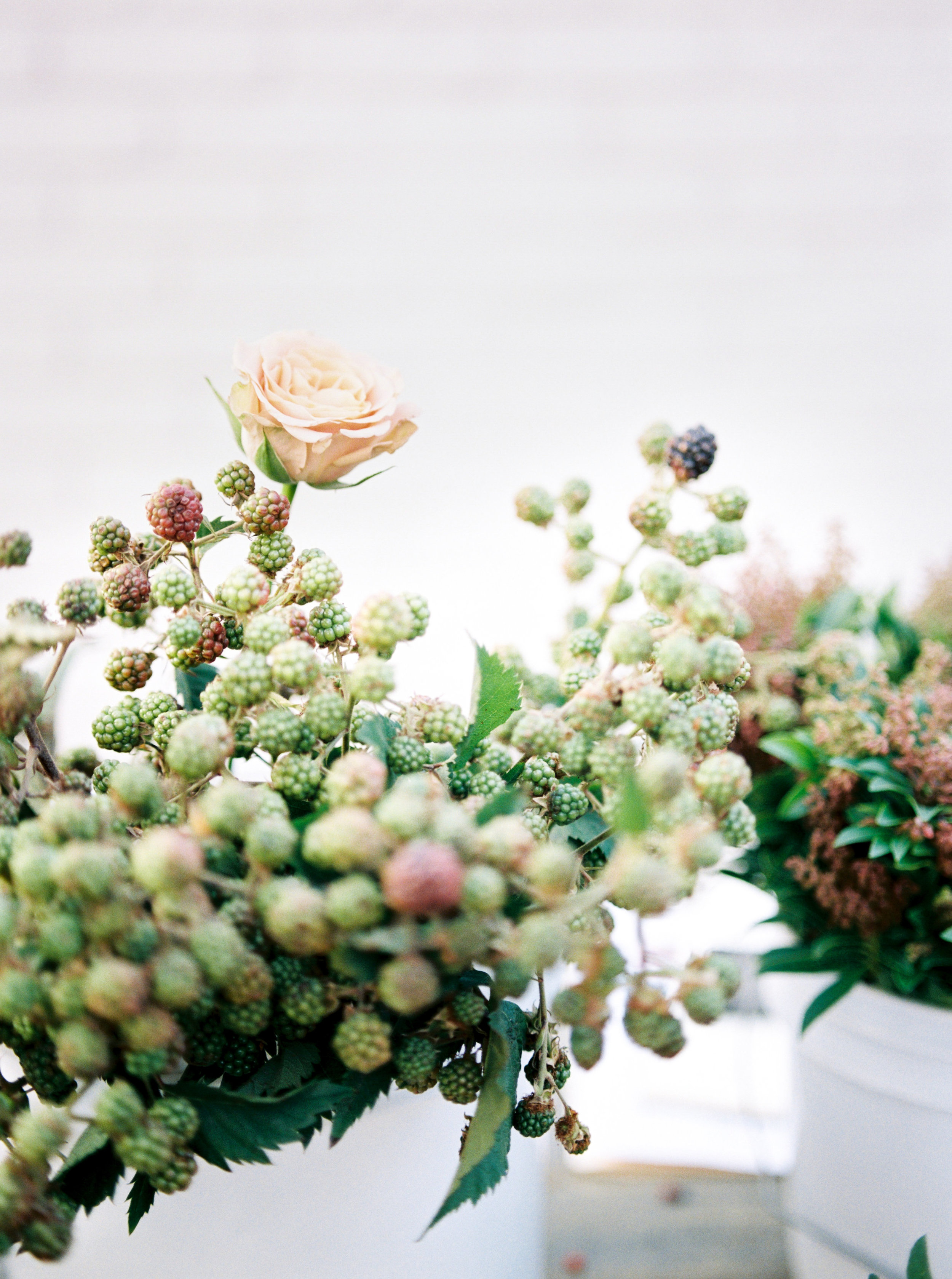 Rachel-Carter-Photography-Denver-Colorado-Film-Florist-Photographer-50.jpg