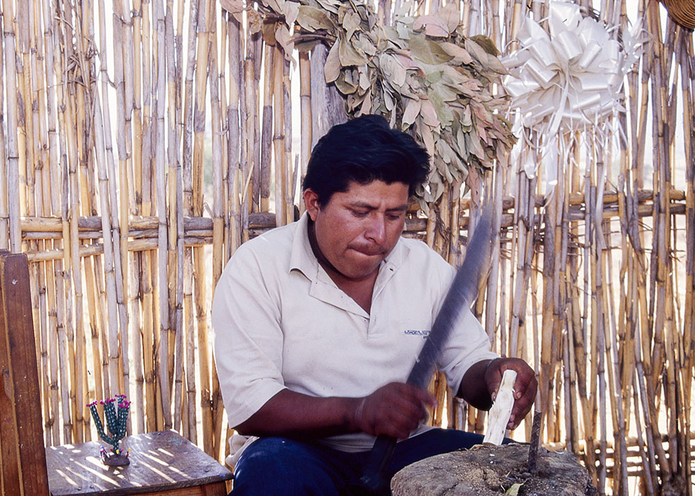 Friends of Oaxacan Folk Art — Woodcarving #19.jpg