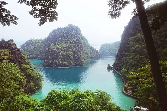 The color of that water though! 🗻💙 . #photooftheday #philippines #coron #mountains #ocean #travel #paradise