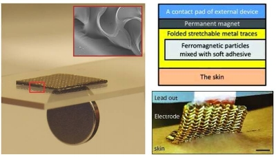 Ferromagnetic electrode.jpg