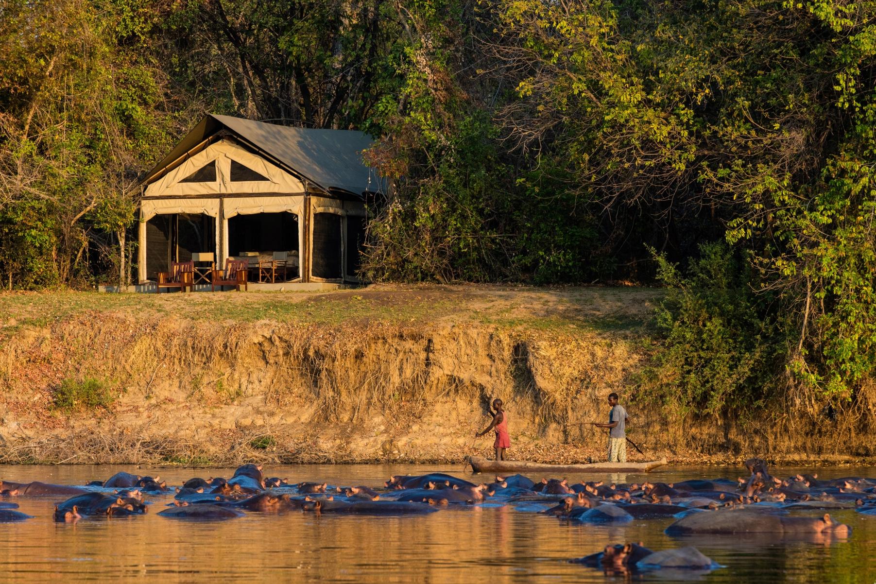 Luangwa ValleyZambia -