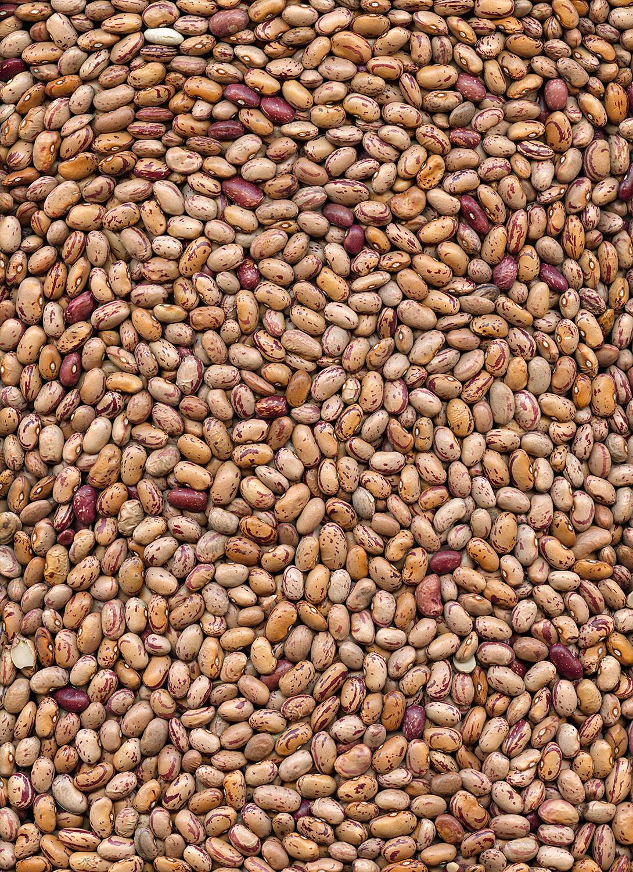 Beans_img009.jpg