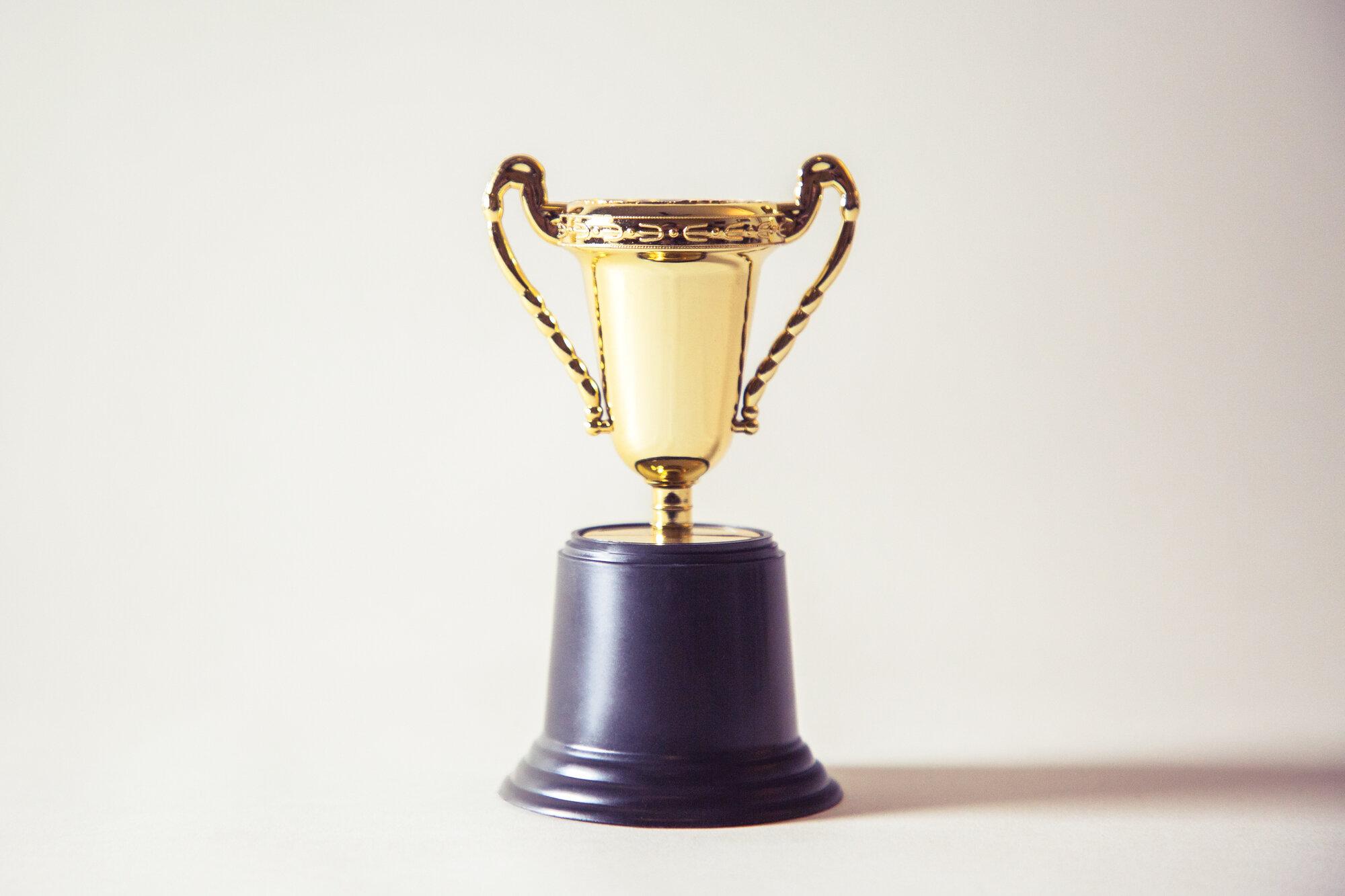 为首届社会创业品牌奖的16位获奖者每人颁发一个虚拟奖杯。照片:乔治•它起码