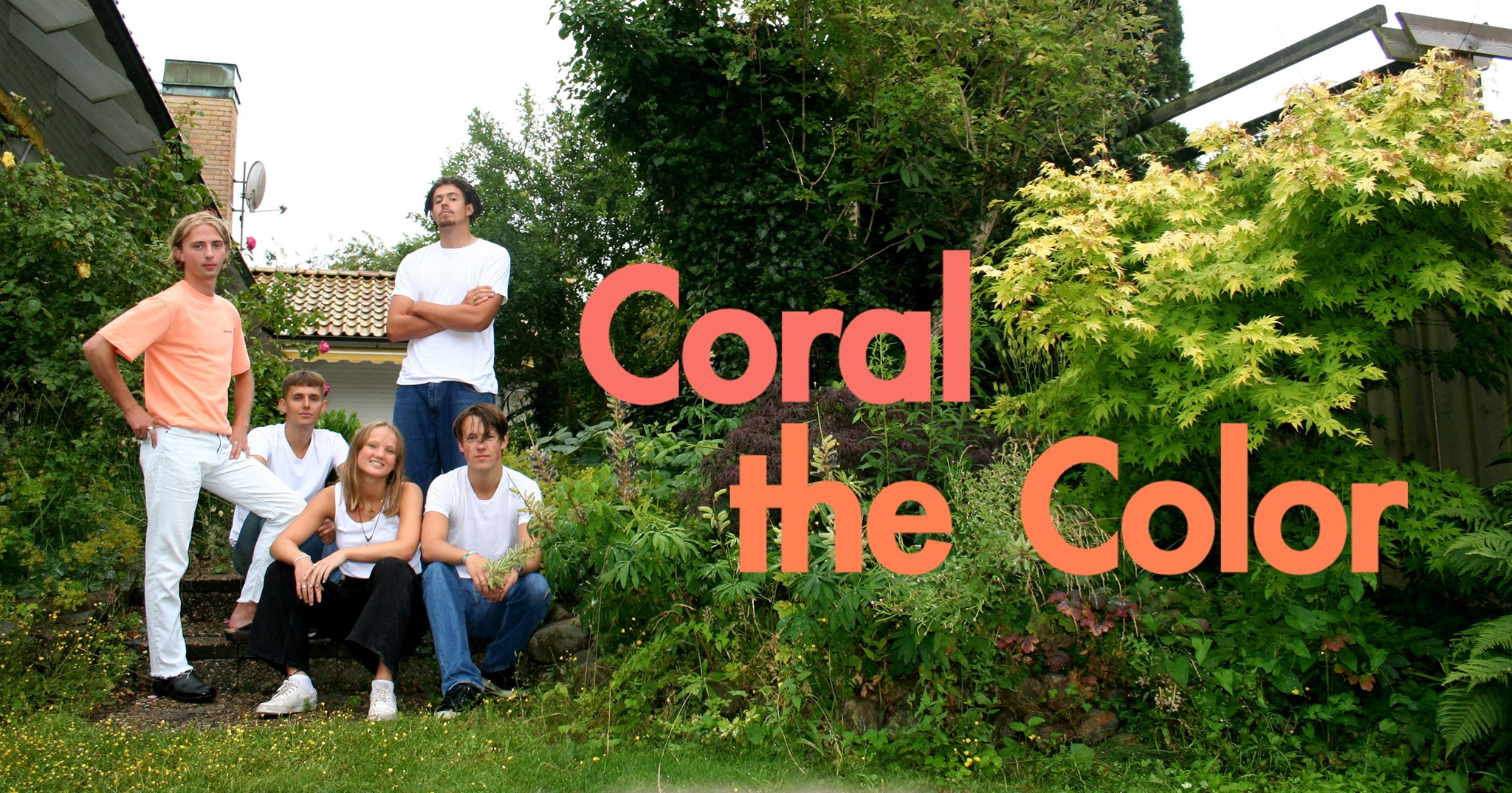Coral the Color