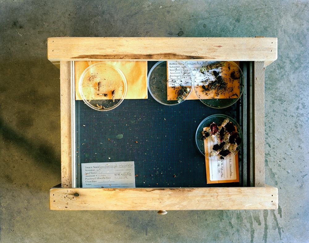 Drying Screens, Lady Bird Johnson Wildflower Center    Austin,Texas, USA