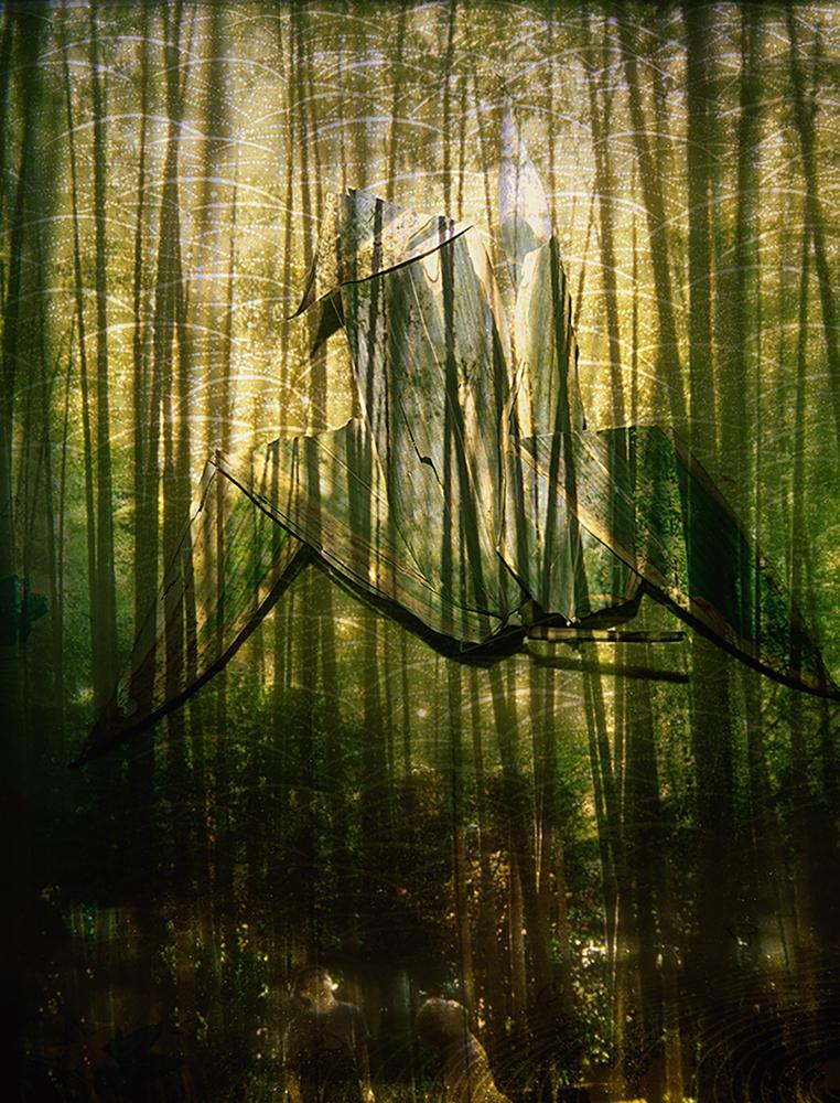 Bamboo Crane   58 x 44inches