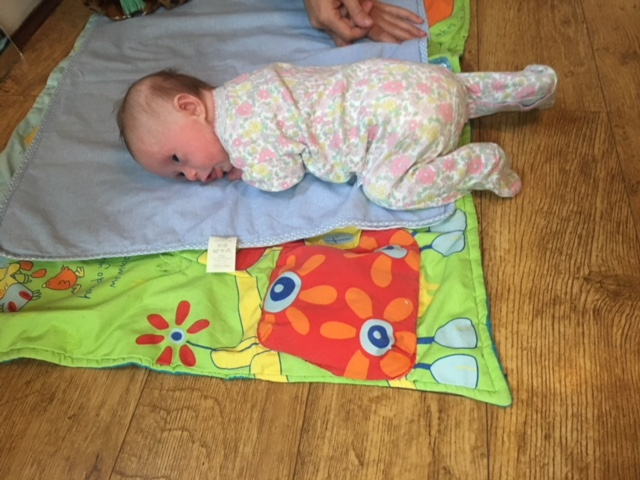 Post roll - nine weeks old