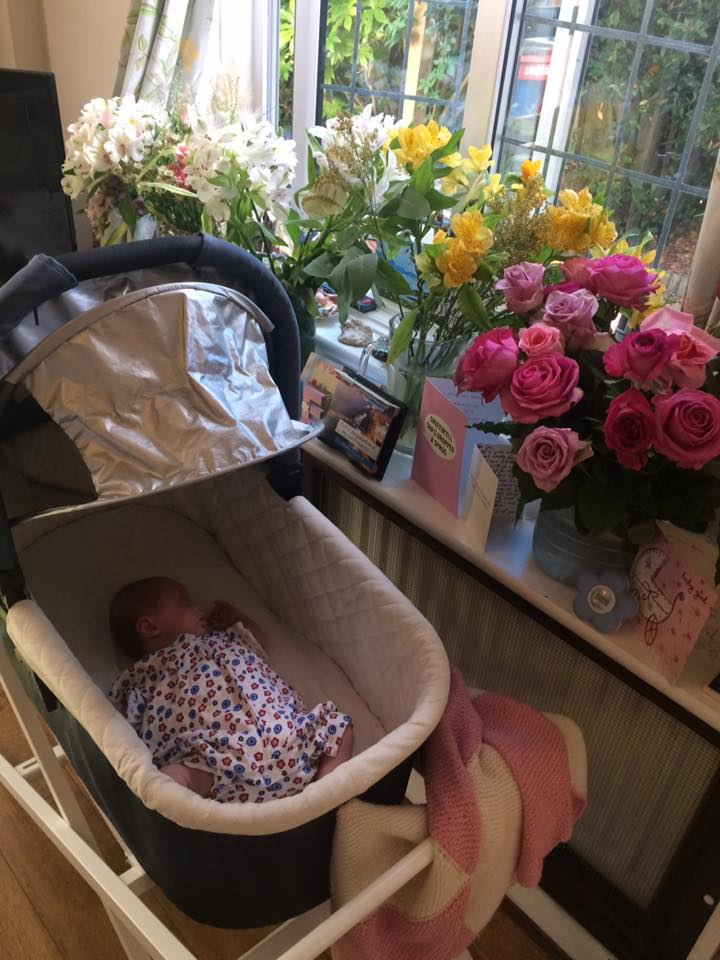 Coraline and her flowers, at two weeks old, August 2017