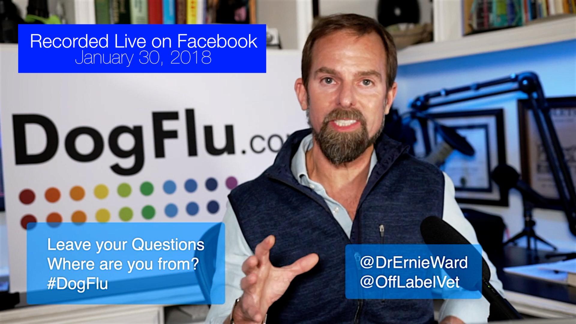 Dog Flu LIVE Q&A Dr Ernie Ward.jpg
