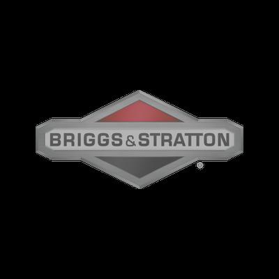 Briggs Stratton.png
