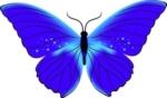 purple-butterfly-clip-art-42941-150x88.jpeg