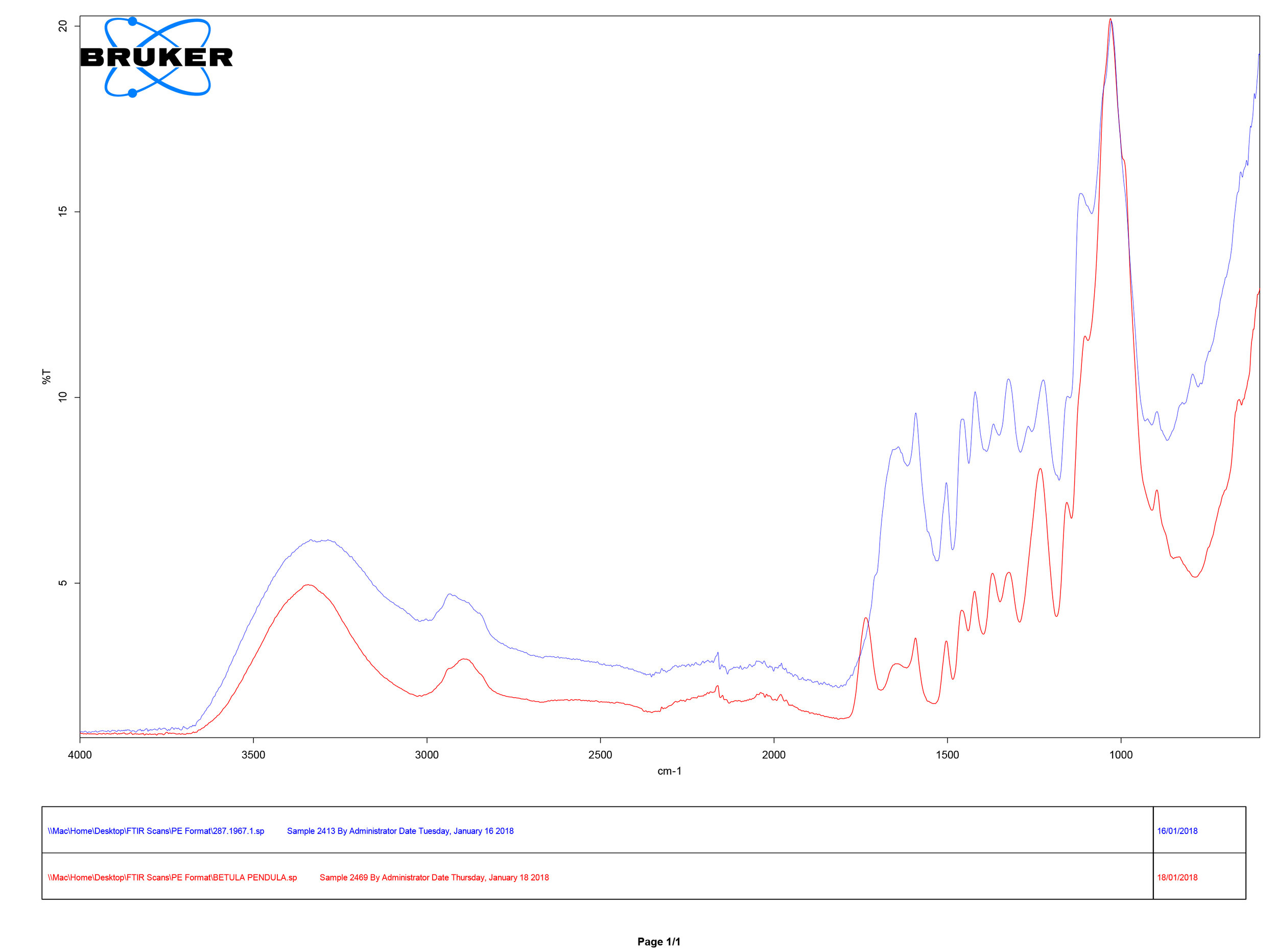FTIR spectral analysis showing comparison of sample collected from spade 284.1967 (blue), and reference sample for Birch ( Betula pendula ) (red)
