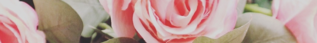 Rachel Farrington-Allen - Director - 07495 055048 - rachel@festivaleventsandplanning.com   Lara Oakes - Director - 07971669798 - lara@festivaleventsandplanning.com  Bespoke, creative solutions for your dream wedding.