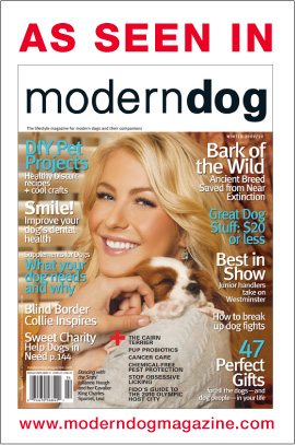 As seen in Modern Dog Magazine Winter 2009-2010!