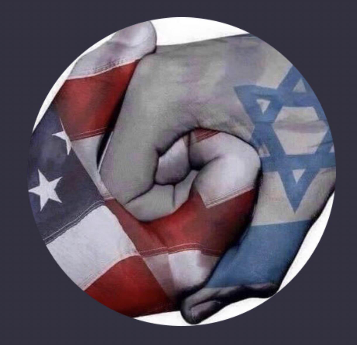 American-JewishFist.JPG